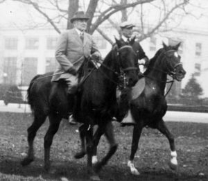 xharding-horse.jpg.pagespeed.ic.96ta8sJTTO millercenter.org