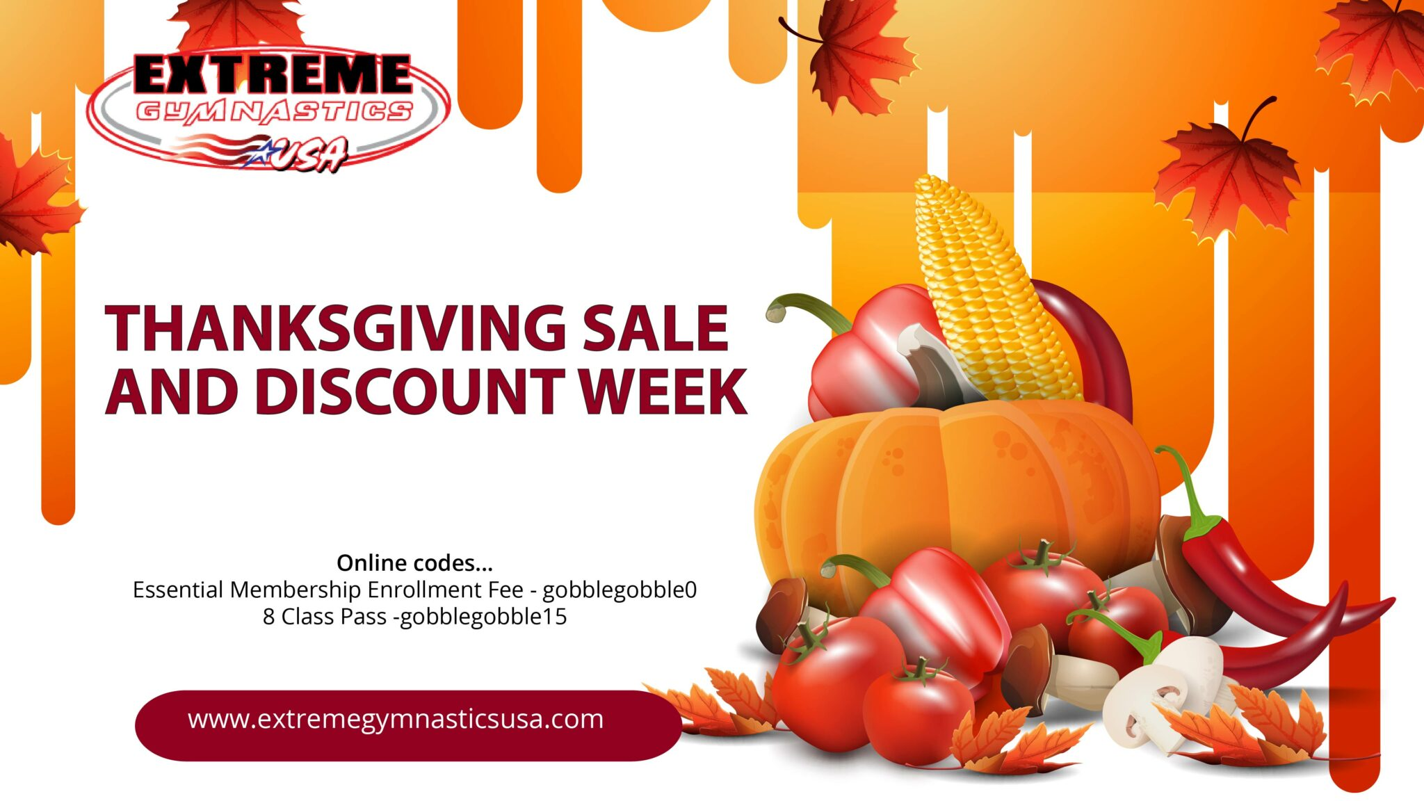 Read more about the article Thanksgiving Sale Promo Codes