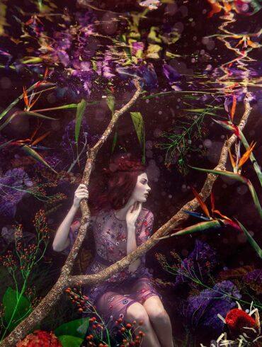 under water photography by australian artist beth mitchell