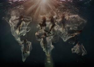 Lexi Laine_Beautiful bizarre 2019 Art Prize Finalist
