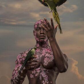 4826_Josh Brandao-photography-figure-birds-fantasy