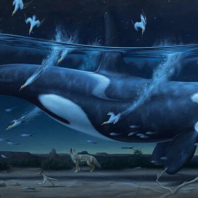 Phillip Singer - surreal killer whale painting - Beautiful Bizarre Art Prize
