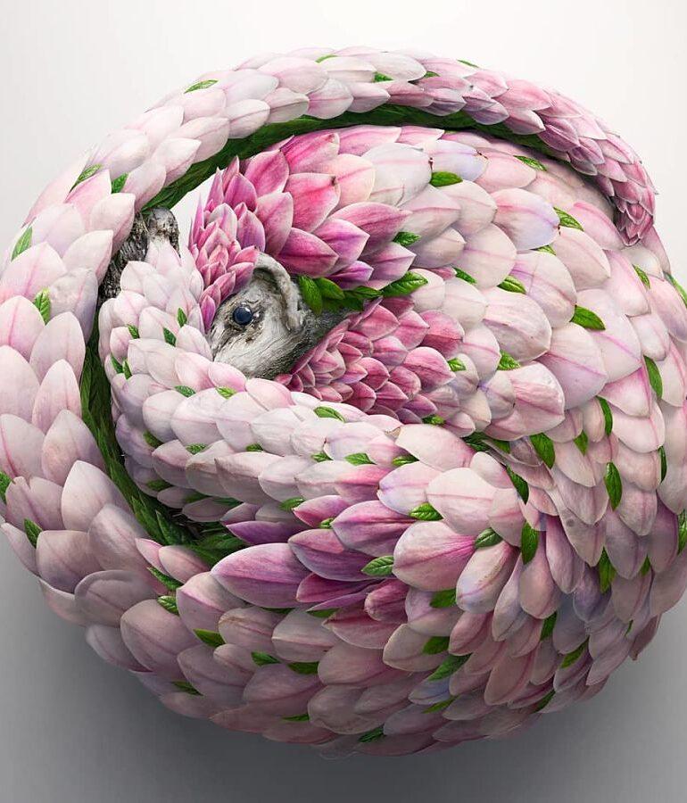 Josh-Dykgraaf-digital-animal-art