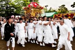 Festival Day-12