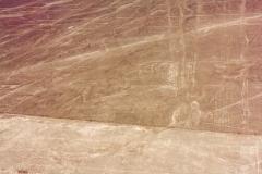 Nazca-9264