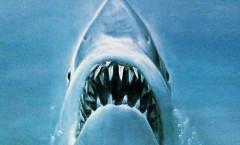 Jaws (Tubarão) - 1975