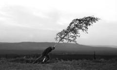 Jungfrukällan/The Virgin Spring (A Fonte da Donzela) - 1960