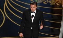 Análise do Oscar 2016