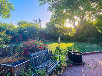 Beautiful green backyard with many trees, bushes, and flowers as well as a bench.