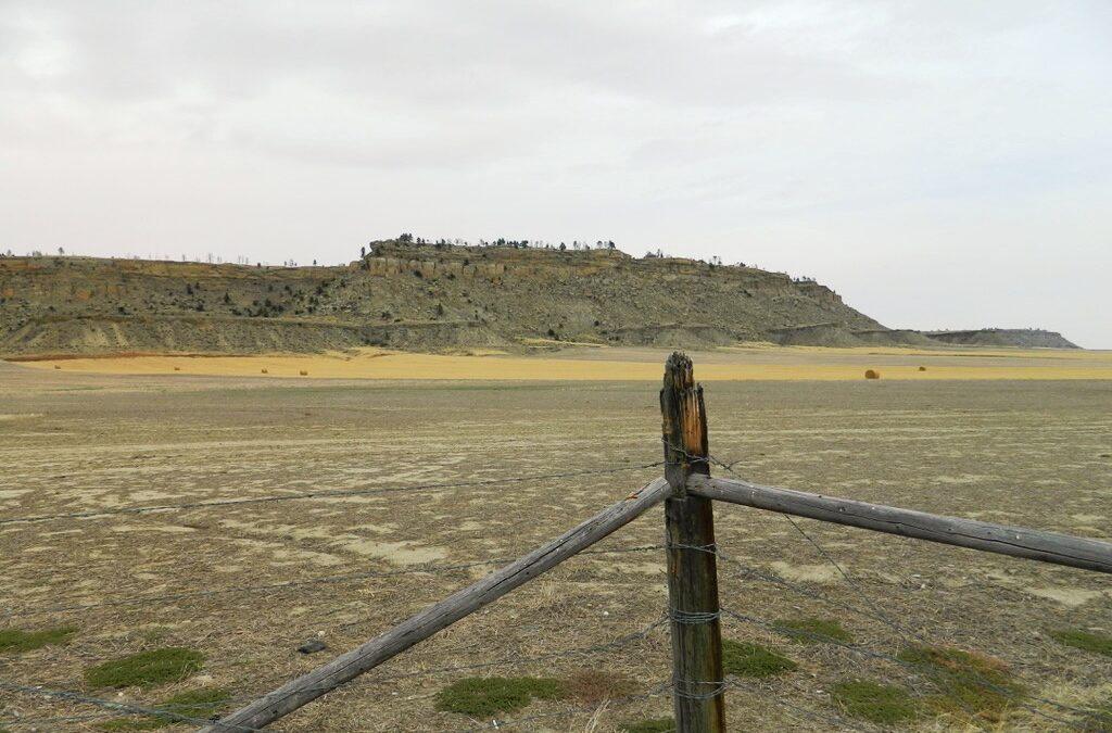 Day 5:  Gardiner to Billings, MT (The Rimrocks and Battlefields)