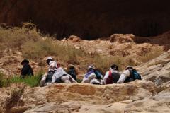 Ein-Avdat-Following-Across-June-2012