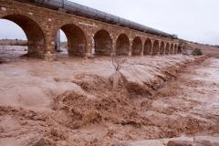 Wadi Flood 6