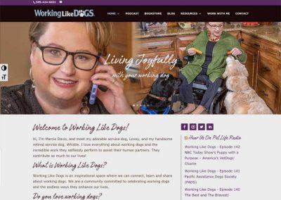 508 compliant websites