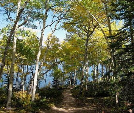 Mount Elbert Hiking Trails
