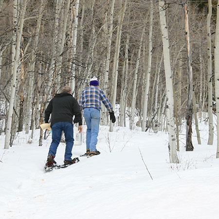 Mt. Elbert Lodge Winter