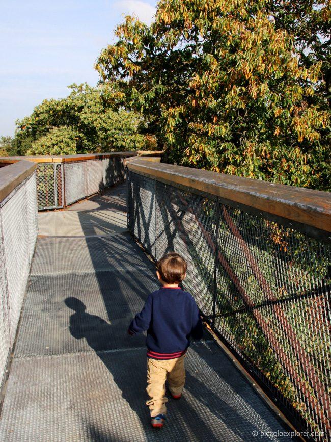 18 meter high Treetop Walkway, Kew Gardens