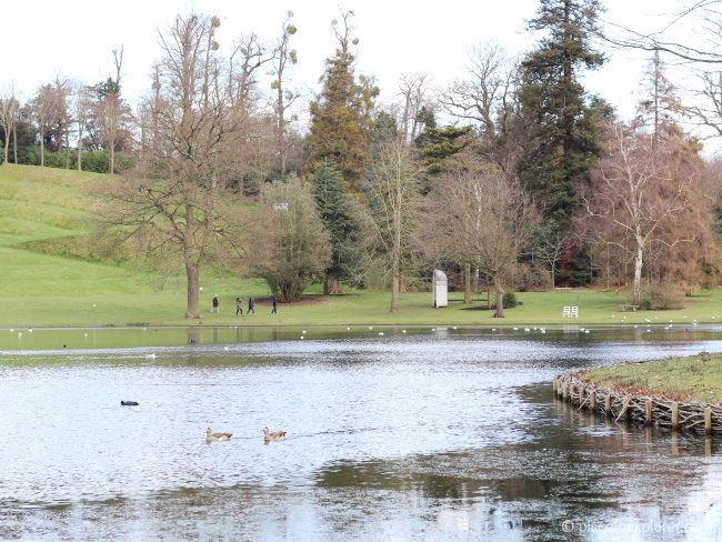 Claremont Landscape Garden, National Trust, Esher Surrey