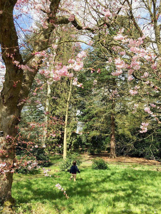 Osterley House & Gardens