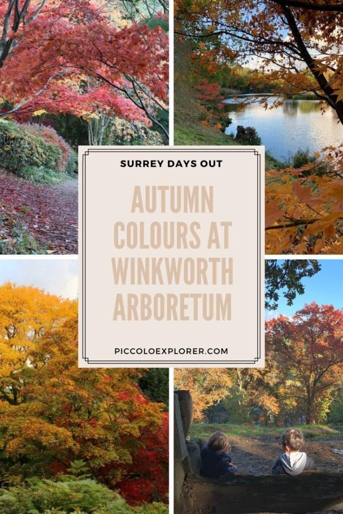 Autumn Colours Winkworth Arboretum Surrey