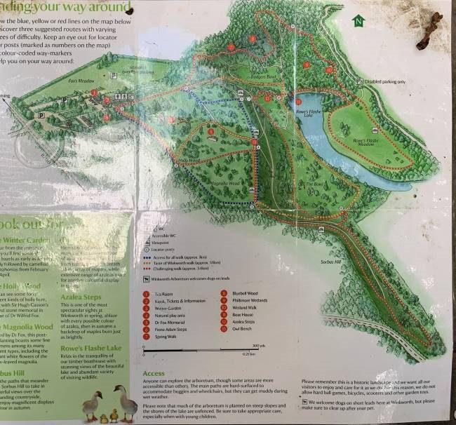 Map of Winkworth Arboretum Surrey