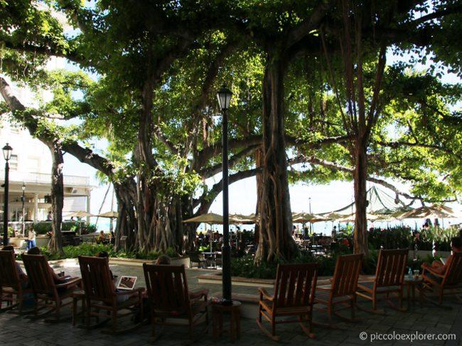 Banyan Courtyard, Moana Surfrider