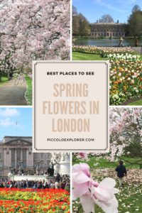 Places to see spring flowers in London