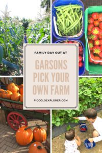 Family day out at Garsons Pick Your Own Farm