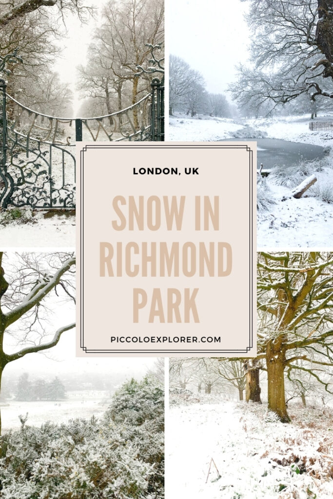Pin for Later - Snow in Richmond Park