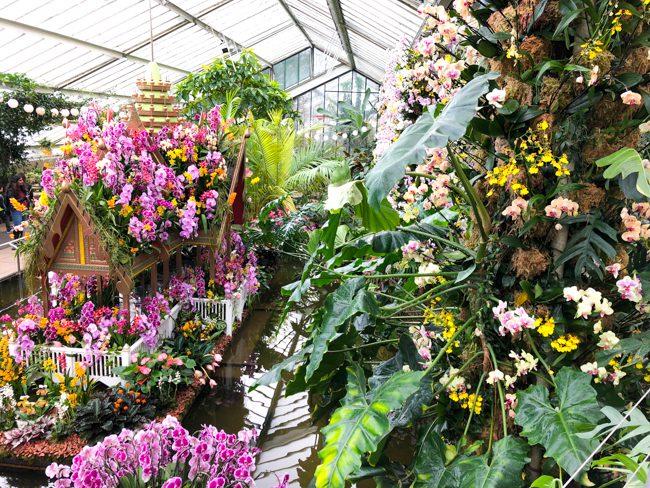 Kew Gardens Orchid Festival London