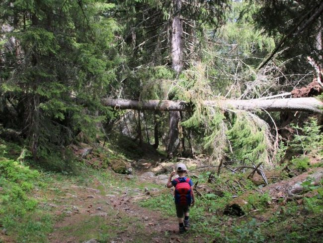 Hiking in Vallorcine French Alps