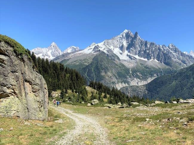 Charlanon meadow Chamonix