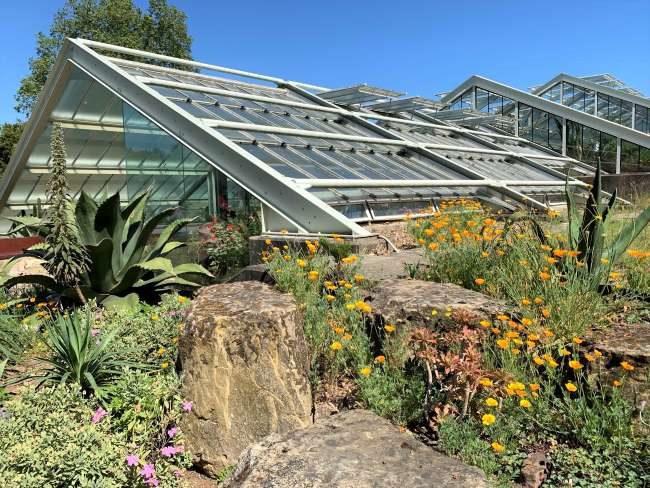 Visiting Kew Gardens in Summer