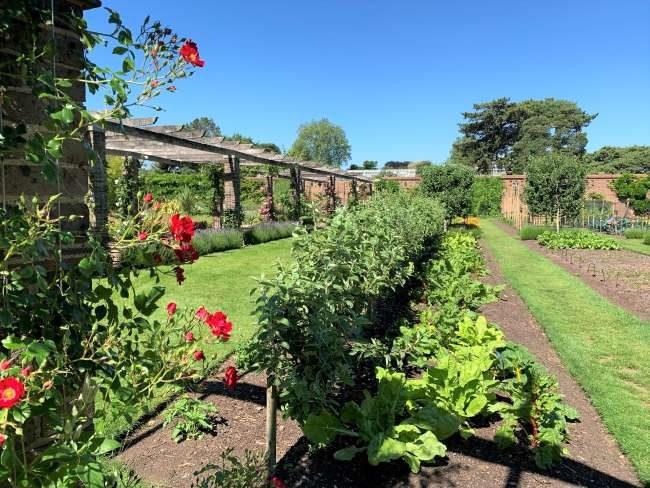 Kitchen Garden at Kew Gardens