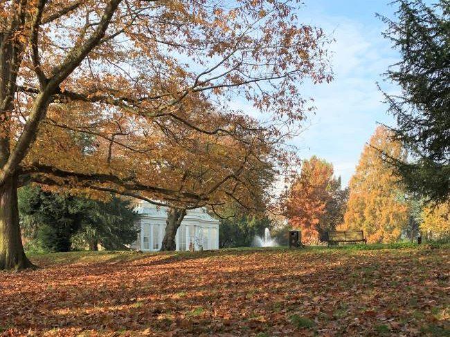 Autumn Gunnersbury Park