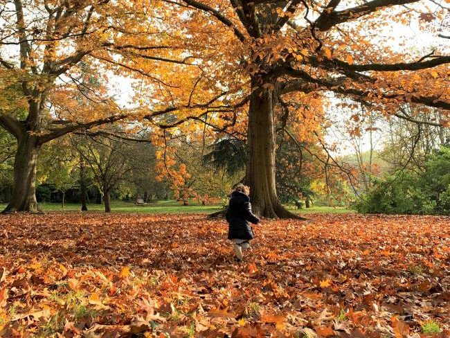 London Autumn