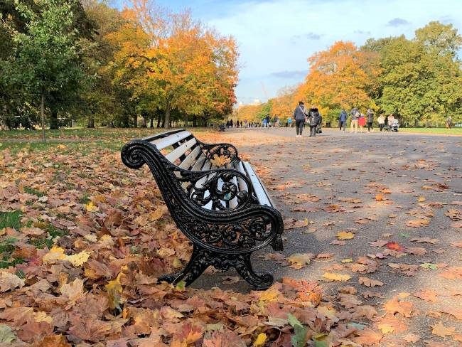 Best Places to see Autumn in London