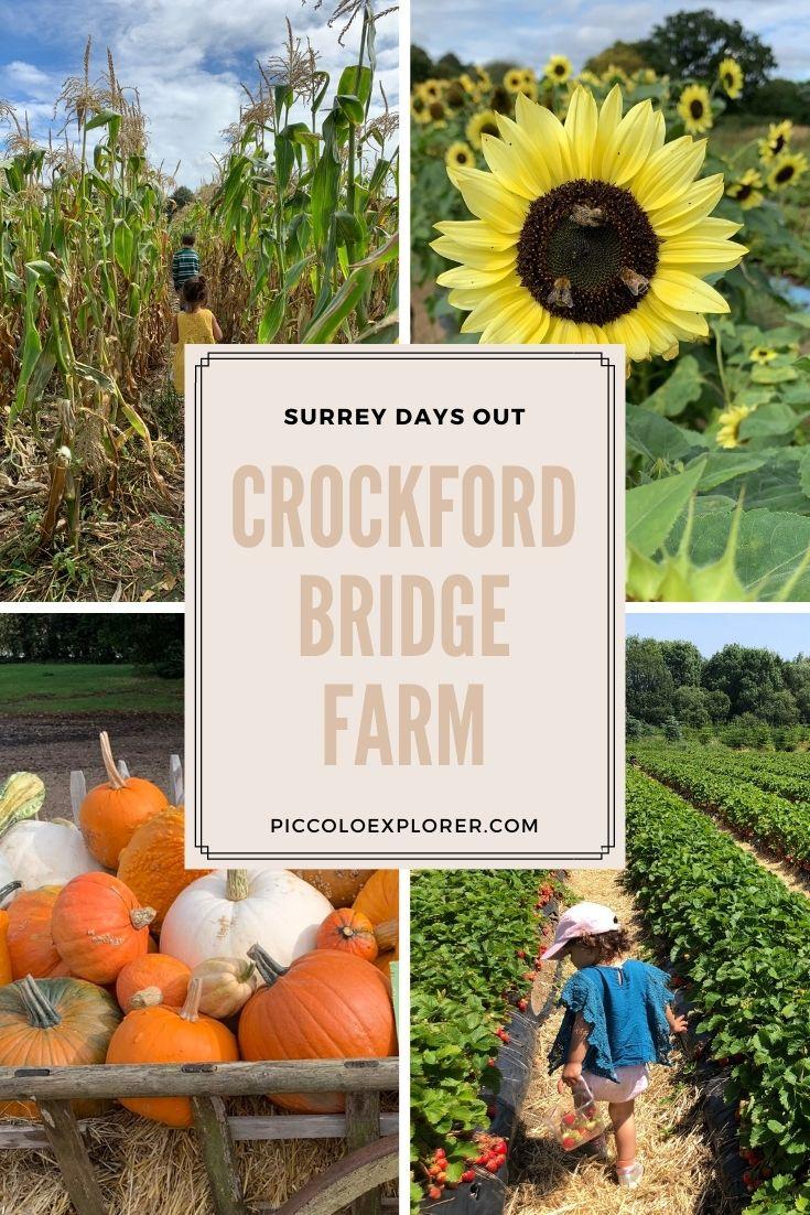 Crockford Bridge Farm Surrey