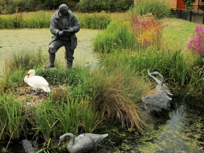 London Wetland Centre Barnes