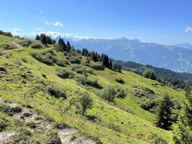 Hiking in the Alps at La Bourgeoise near Morzine