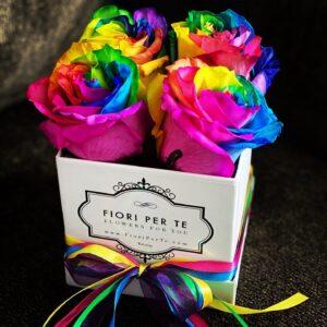 Rainbow - Pride & Joy