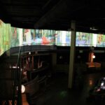 Stingaree Night Club Interior Projection Mapping Experience