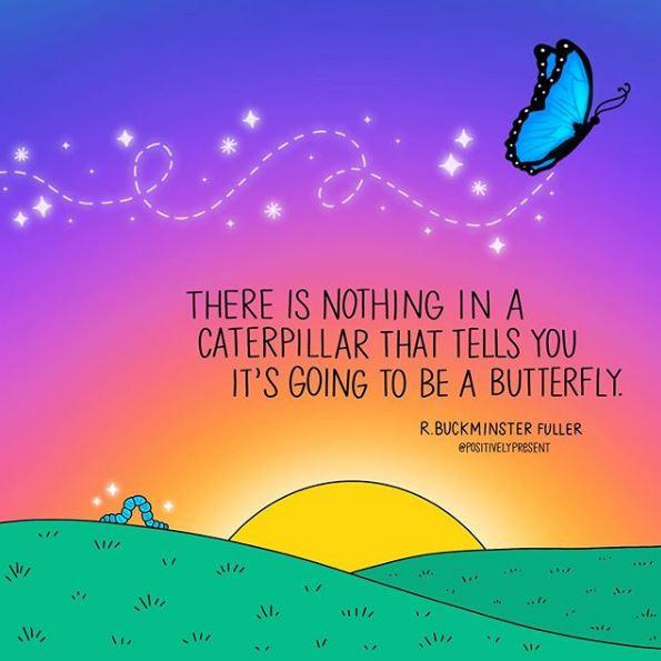 positivelypresent_caterpillar
