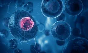 BrainStorm Expands Clinical Pipeline