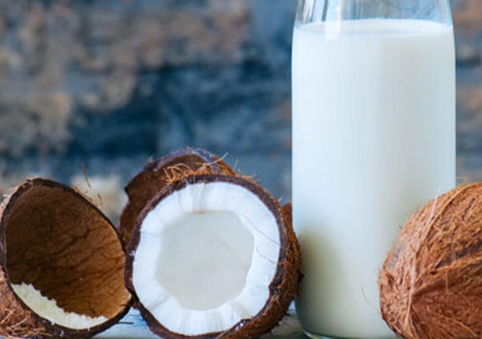 Coconut Milk, A Delicious Dairy-Free Alternative!