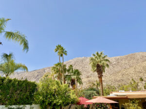 The view from Suite 8, featuring the San Jacinto Mountains, palm trees and blue cloudless sky.