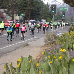 Lake Tahoe Cycling Events America's Most Beautiful Bike Ride