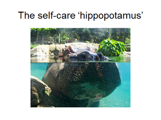 self-care-hippo