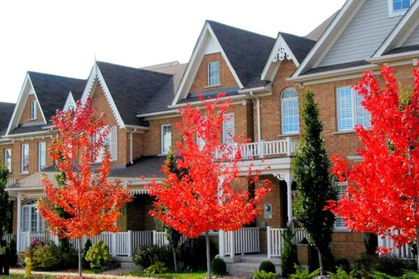 power washing townhomes apartments maryland delaware