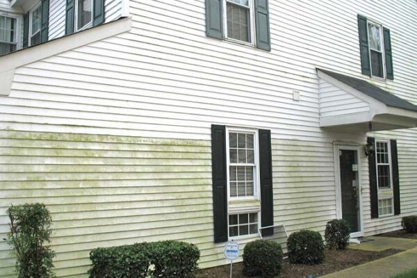 Ez clean md before after house washing