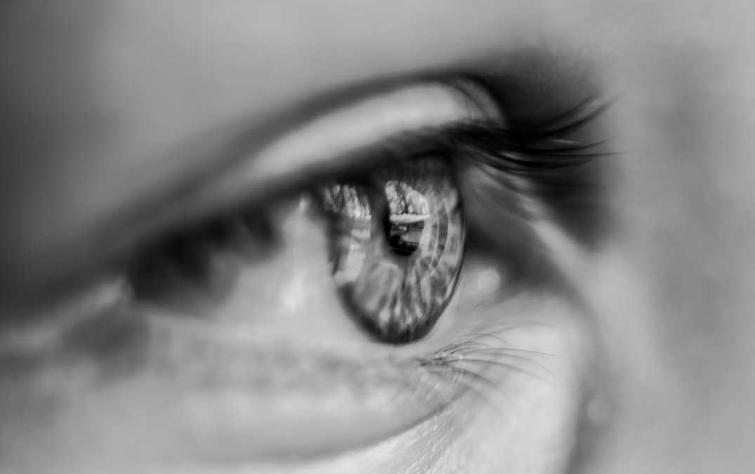 Understanding Saccadic Ocular Movements and Function